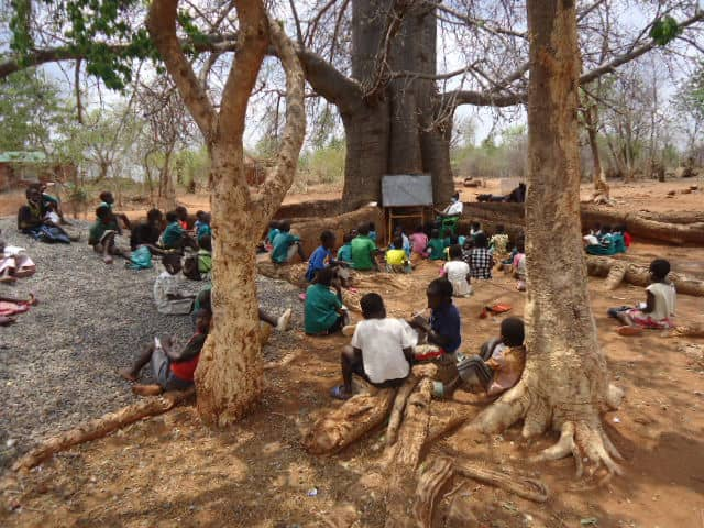 Children at an outdoor class by a tree